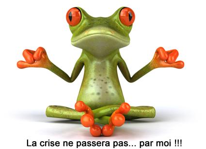 Grenouille zen