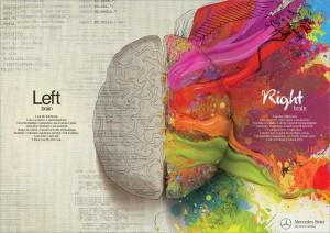 cerveau irm cerebrale
