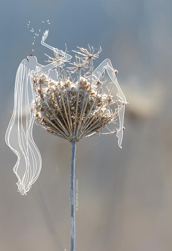 grumeau fleur courage